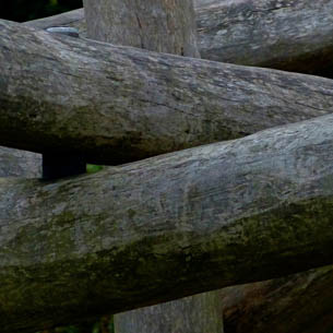 Getting Directions: illustration of wooden poles