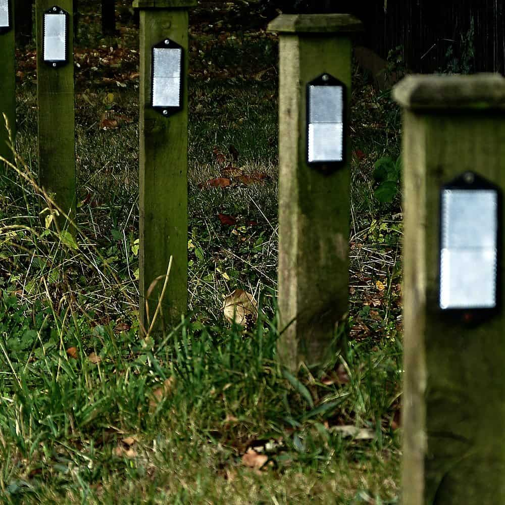 Waymarkers by a path