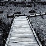 Thumbnail: A wooden walkway