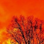Thumbnail: an orange-red sky
